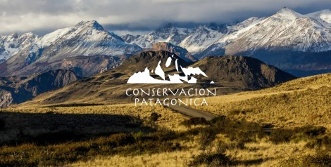 http://www.conservacionpatagonica.org/home.htm