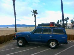 Beckey sun bathing at Venice Beach