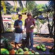My friend Julio teaching us to climb for coconuts