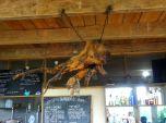 Tree root chandelier